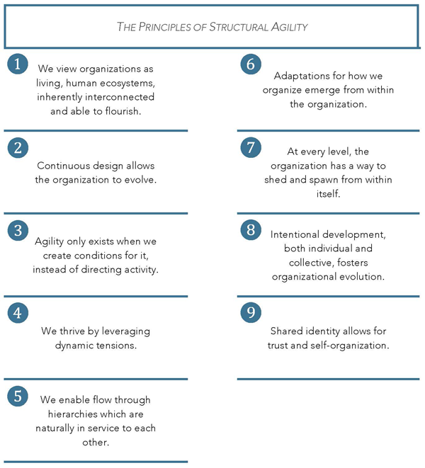 Principles of structural agility